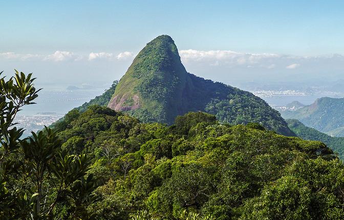 Pico da Tijuca & Tijuca Mirim Trilha-Pico-da-Tijuca