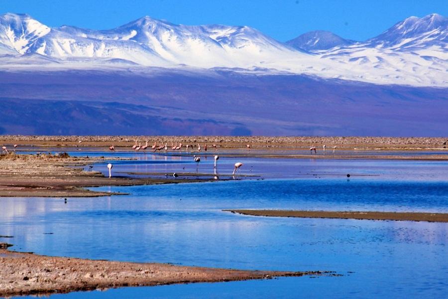 Lagunas Altiplânicas de São Pedro de Atacama 1