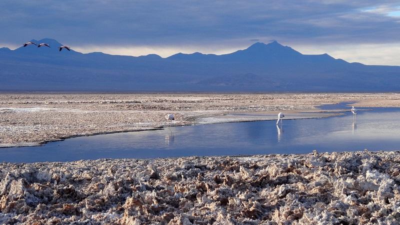 Lagunas Altiplânicas de São Pedro de Atacama 5