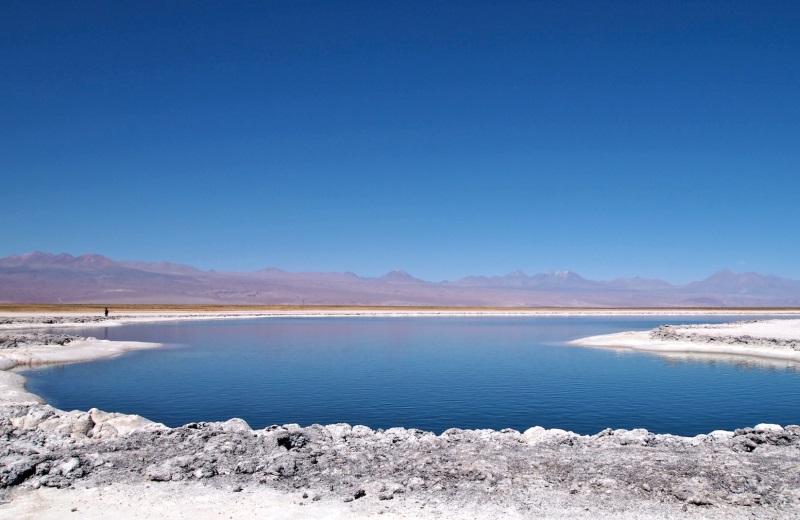 Lagunas Altiplânicas de São Pedro de Atacama 9